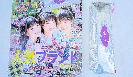 【購入レビュー】nicola (ニコラ) 10月号 付録 WEGOオーロラ ラメ ペンケース