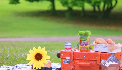 ピクニックやアウトドアのおでかけに使える!親子おそろいバッグは付録でゲット!
