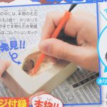 【次号予告】小学8年生 2019年8・9月号《特別付録》化石発掘体験キット&コレクションボックス