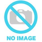 【次号予告】Popteen(ポップティーン)2020年3月号《特別付録》5252 by O!Oi(ゴニゴニ バイ オーアイオーアイ)ダブルロゴウエストポーチ
