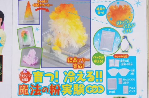 【次号予告】小学8年生 2021年8・9月号《特別付録》育つ!冷える!!魔法の粉実験キット