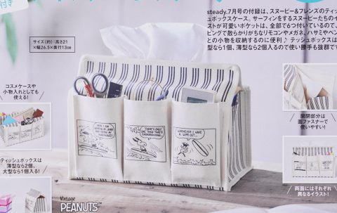 【次号予告】steady.(ステディ)2021年7月号《特別付録》スヌーピー&フレンズの 便利な6ポケット付き ティッシュボックスケース